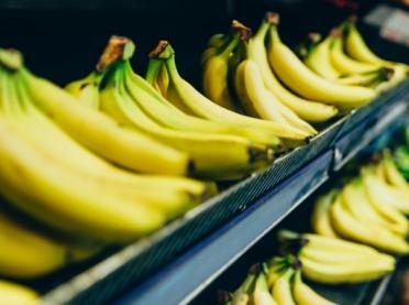 Banany hitem eksportowym Polski?