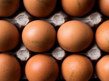 IMAS Agri: Niewiele ponad jedna trzecia Polaków rozpoznaje poprawnie kody na jajach
