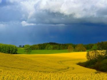 Fenologiczne obserwacje i ich znaczenie dla rolnictwa - musisz to wiedzieć!