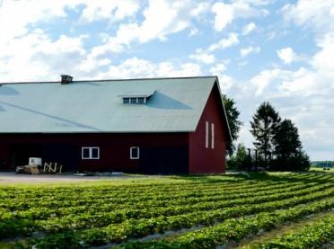 Restrukturyzacja małych gospodarstw - decyzja i co dalej?