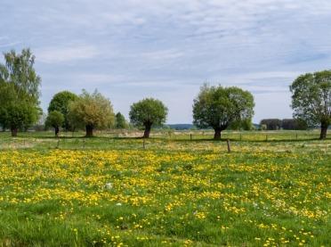 Zmiany formularza wykazu producentów ekologicznych - KRIR ma propozycje!