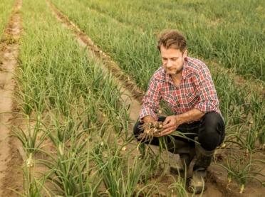 Premia dla młodych rolników - już można składać wnioski!