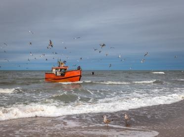 Rybacy w sieci kłopotów