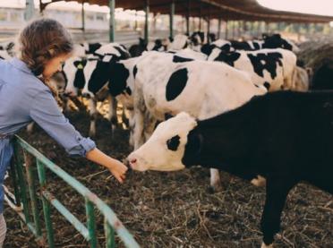 KRUS wybiera IBM Cloud, aby poprawić bezpieczeństwo pracy w rolnictwie