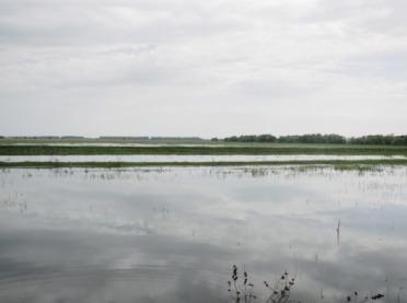 Zalane gospodarstwa - jaka skala zniszczeń?