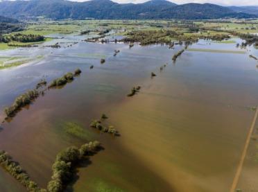 Uprawy po powodzi są skażone