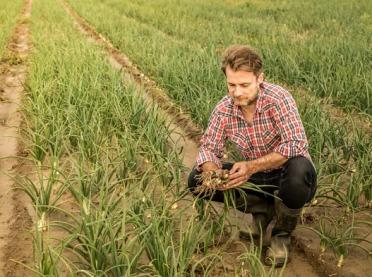 Większe pieniądze dla młodych rolników