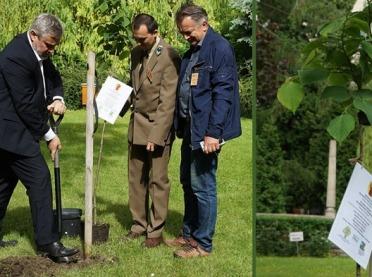 Minister Ardanowski posadził lipę miododajną