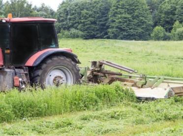 Jak wybrać termin koszenia łąk?