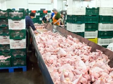 Korzystniejsze warunki eksportu mięsa i produktów drobiowych na Kubę
