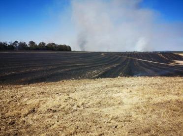 Spłonęło 170 hektarów: zboże, las i ciągnik