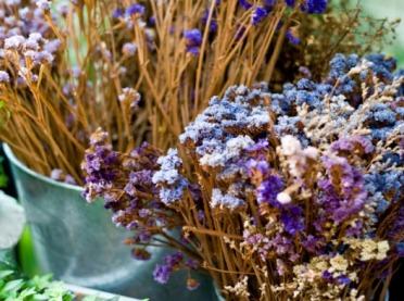 Jaki wpływ na nasze zdrowie mają suszone kwiaty?