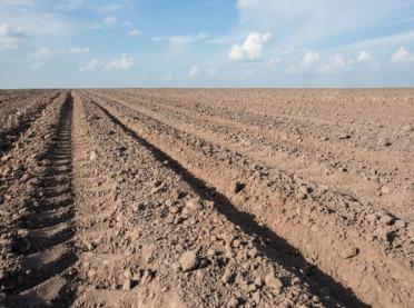Gleba rozebrana na czynniki - jak pobrać próby?