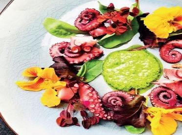Kwiaty do celów kulinarnych
