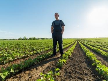 Dziedziczenie, a premia dla młodych rolników
