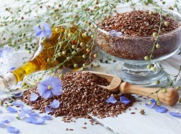 Olejowe żniwa - zastosowanie roślin oleistych wlecznictwie
