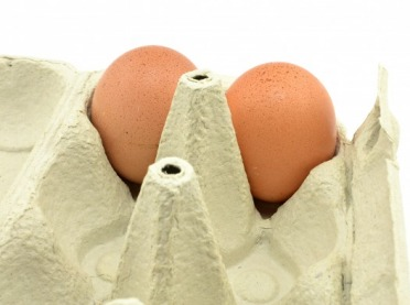 Salmonella w jajach z Ukrainy? Prawda czy fałsz?