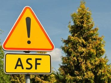 Na Kujawach boją się ASF