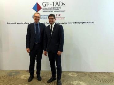 Posiedzenie stałej grupy ekspertów ds. ASF w Europie