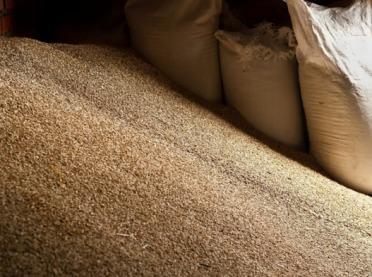 Dlaczego rolnicy decydują się na zakup i wysiew nasion kwalifikowanych?