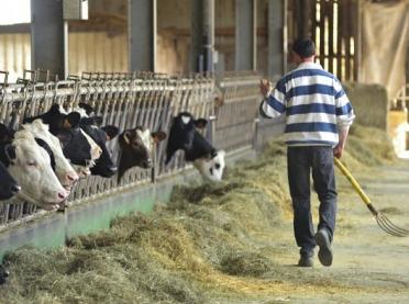Debata nad Wspólną Polityką Rolną po 2020 - czas na nowe plany strategiczne