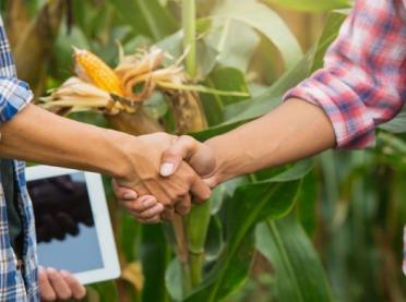 ARiMR: wsparcie dla grup producentów rolnych - wiemy, kiedy nabór wniosków!