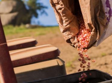 Marka nasion – Brevant™ wchodzi na polski rynek