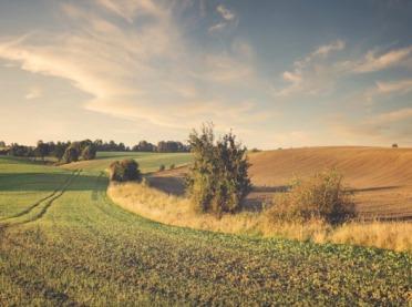 Jak zachować krajobraz polskiej wsi?