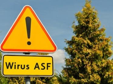 Na Kujawach porozumieli się w sprawie ASF