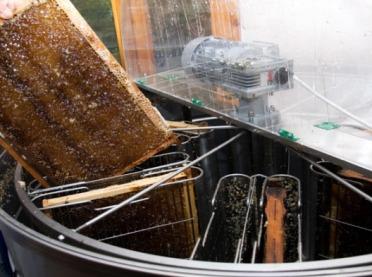 Wsparcie rynku produktów pszczelich - sezon 2020-2022