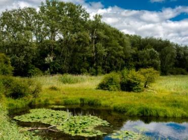 """Nawet 500 tys. zł na """"Inwestycje w gospodarstwach położonych na obszarach Natura 2000"""""""