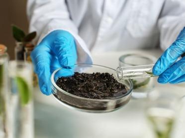 Czas na analizę gleby