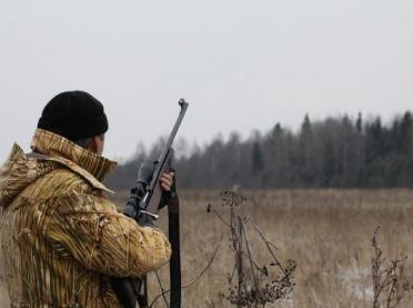 Ekolodzy zablokowali odstrzał dzików