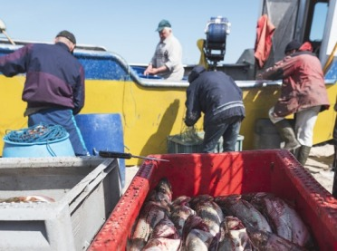 Rada Europejska o pomocy dla rybaków bałtyckich