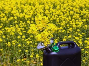 ORLEN rozważa innowacyjną produkcję biokomponentu do paliw