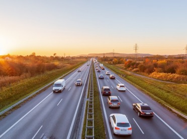 ASF: Blokują przejścia zwierząt przez drogi