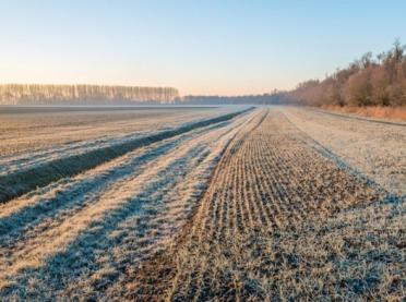Susza rolnicza w środku zimy? Niestety…