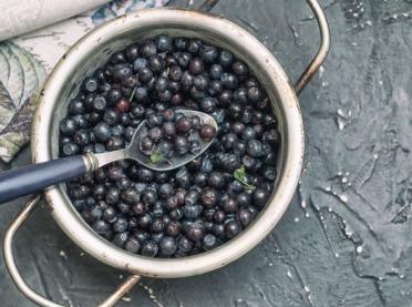 Czarne jagody – naturalny lek na...