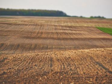 Droga ziemia w Wielkopolsce i na Kujawach