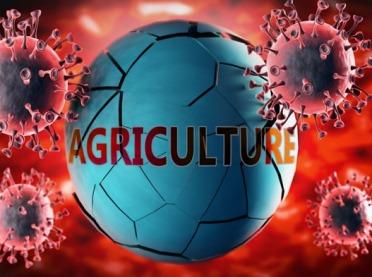 Wpływ COVID-19 na rolnictwo w UE