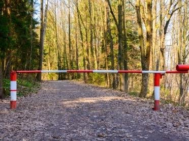 Lasy Państwowe wprowadziły tymczasowy zakaz wstępu do lasów