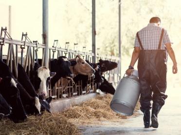 Potrzebny interwencyjny skup masła i mleka