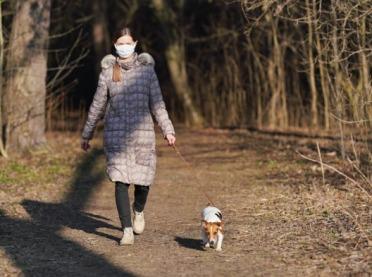 Lasy znów dostępne – czy podczas spaceru musisz mieć maseczkę?