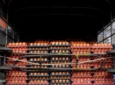 Singapur otwiera rynek dla polskich produktów