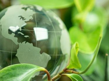 Dziś Światowy Dzień Ziemi