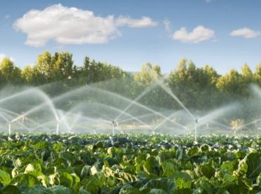 Uwaga! Wydłużony termin naboru! Nawadnianie w gospodarstwach rolnych