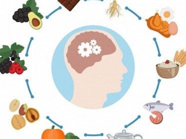 Dieta dla mózgu – czyli co jeść, aby poprawić pamięć?