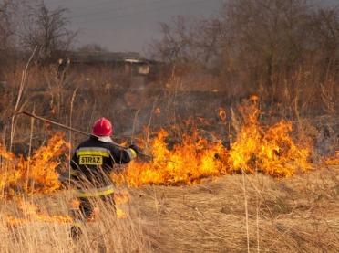 MŚ: kary za wypalanie traw będą bardzo zaostrzone
