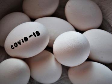 Jak COVID-19 wpłynął na sektor drobiu i jaj