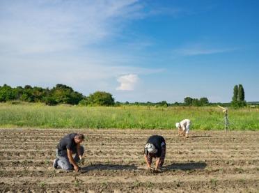 Pracownicy sezonowi mogą przyjechać do Polski